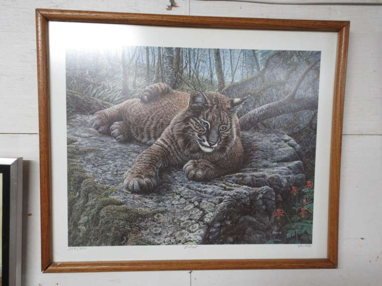 Bobcat by Artist Ed Newbold, Hand Signed, Titled, and Numbered 264/900