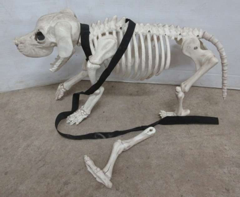 Plastic Skeleton Dog