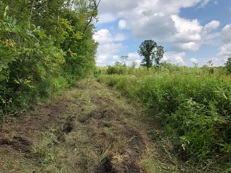 September 25th (Wednesday) Real Estate Hunting Land - Tuscola County