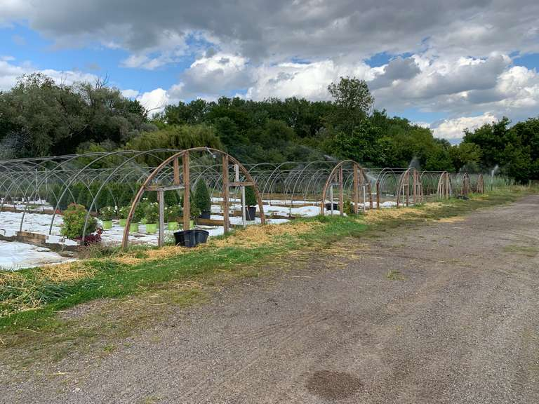 September 24th (Tuesday) Wade Nursery Retirement Offsite Auction, Macomb, MI