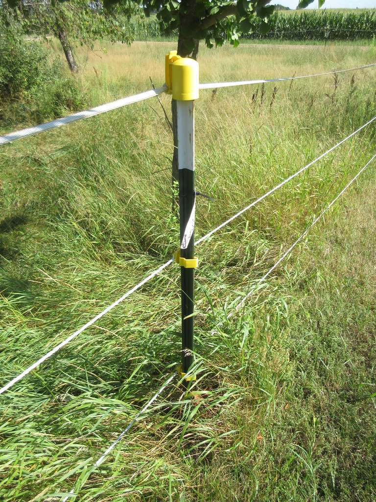 Large Lot of T-Posts, and Fiberglass Electric Fencing, Looks Like Over 100 Posts in Good Condition, Buyer to Remove