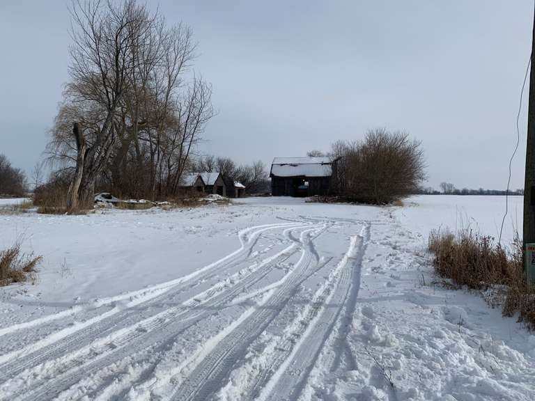 March 12th (Thursday) 50 Ac. +/- Farmland Online Auction, Midland County