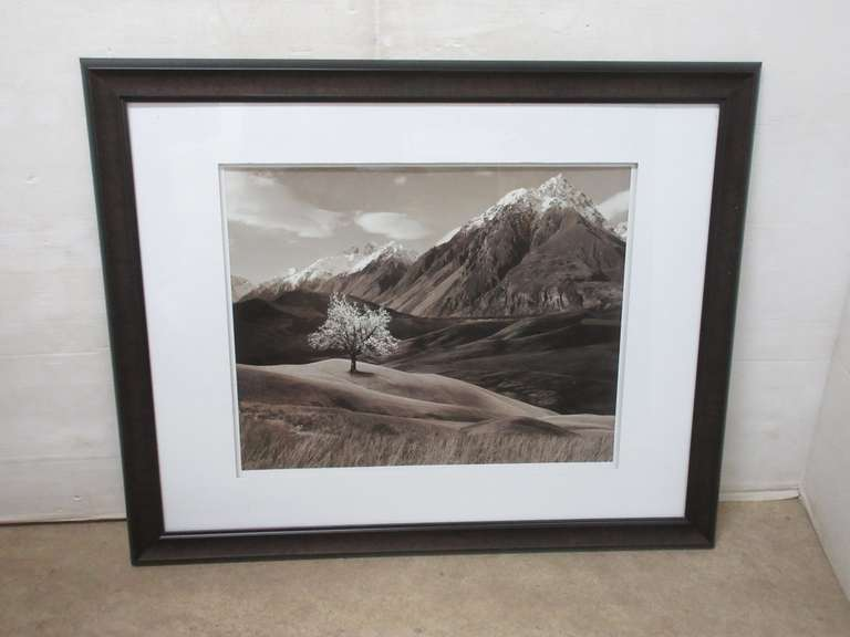 Black and White Snow Covered Peaks Print