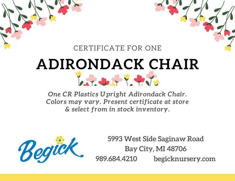 CR Plastics Upright Adirondack Chair, Choice of Available Color from Begick Garden Center