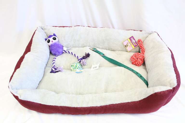 Five-Piece Dog Set With Bed, Collar, And 3- Toys