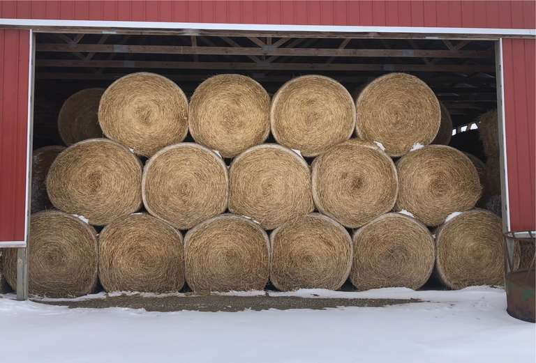 (1)-Bale of Feed Quality Straw, 4' x 5' Round Bales, Approx. 600 lbs., Housed, NOTE:  You are placing a Bid by the BALE, Must Purchase a Minimum of 50-Bales (Can Purchase up to 200 Bales), Trucking Available for a Fee