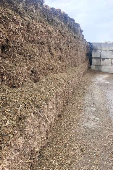 (1)-Ton of Corn Silage, You are placing a Bid by the TON, Must Purchase a Minimum of 20-Tons (Can Purchase up to 150 Tons), Trucking Available for a Fee