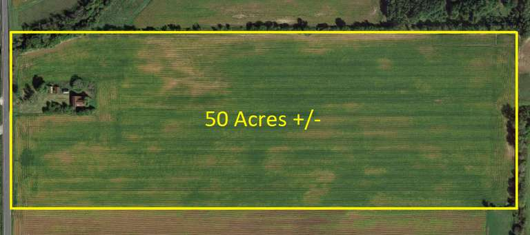 50 Ac. +/- Productive Farmland which includes several old barns and a foundation.