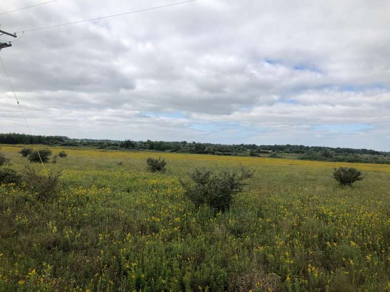 October 28th (Wednesday) 100 Acres of Hunting Land - Sanilac, Co