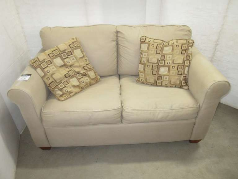 Sleeper Loveseat/Sofa