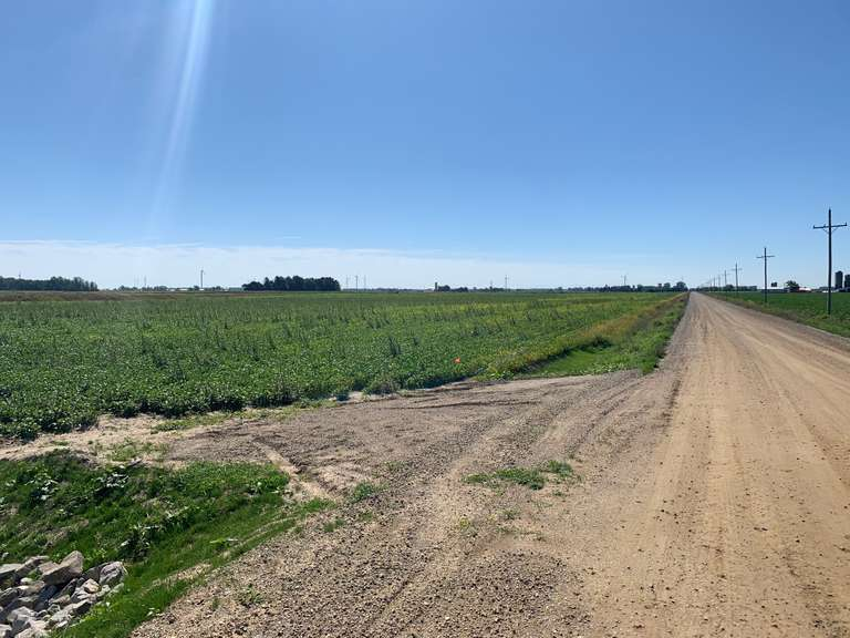 SOLD!  -  80 Acres Farmland - Huron Co. -  Guza Farm - CALL NOW TO SELL YOUR LAND!