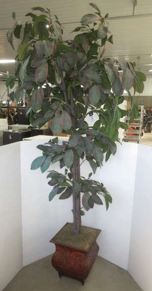 Artificial Decorative Asian Fig Tree