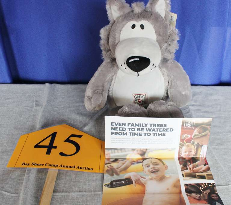 Gift Card for Great Wolf Lodge (Value $500) and Stuffed Wolf